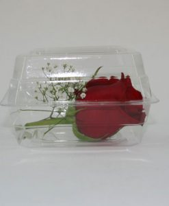 Cut Floral Boxes and Bags